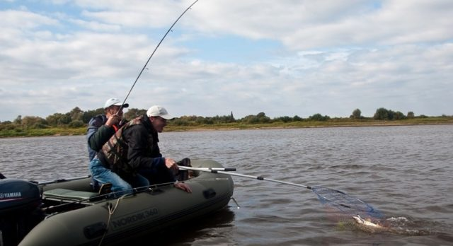 Рыбалка на озере Ильмень: зимой, летом, видео