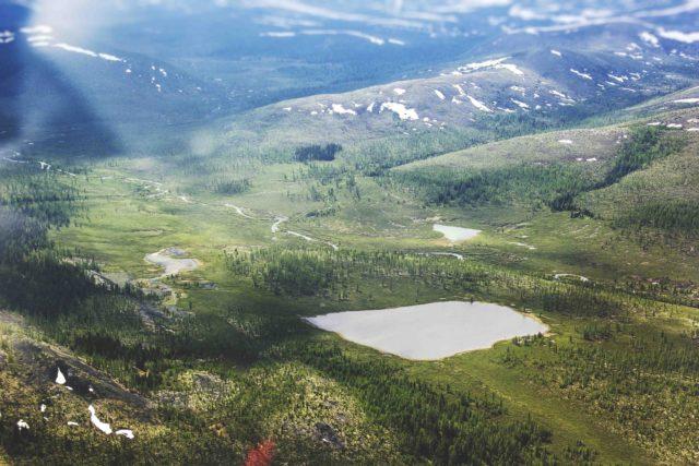 Байкало-Ленский государственный природный заповедник: флора и фауна, фото