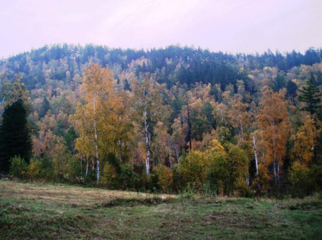 Камень Черского в Листвянке: фото, как добраться, отзывы