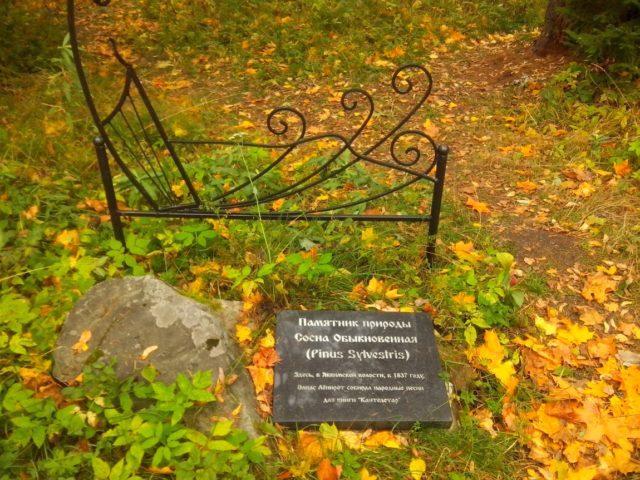 Лахденпохья: достопримечательности, фото и информация
