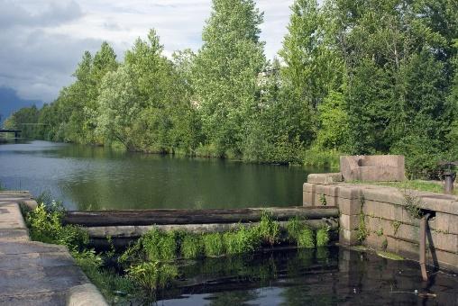 Какая рыба водится в Ладожском озере и как ее ловить